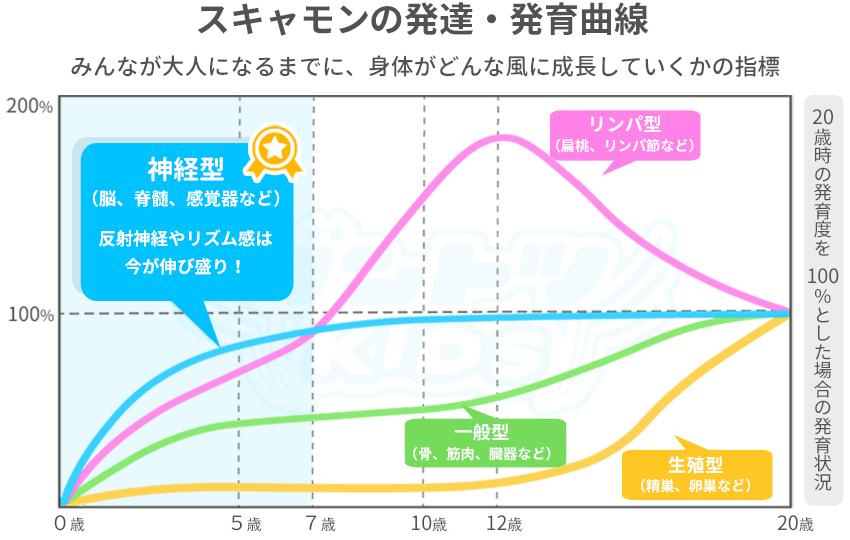 スキャモンの発達発育曲線